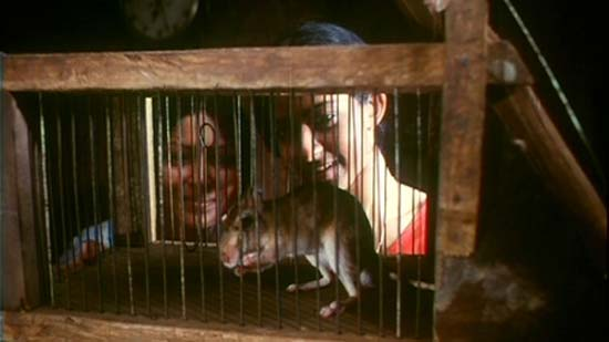 Elippathayam / Rat Trap